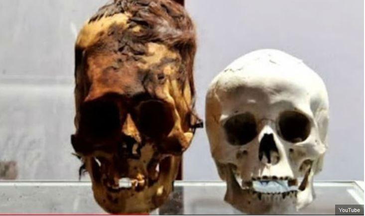 alien skulls.JPG